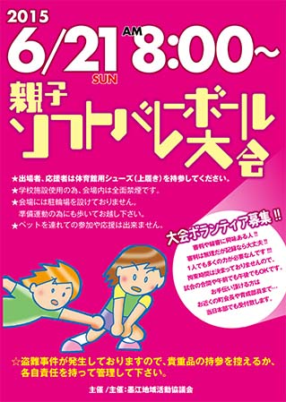 2013ソフトバレーポスター のコピー