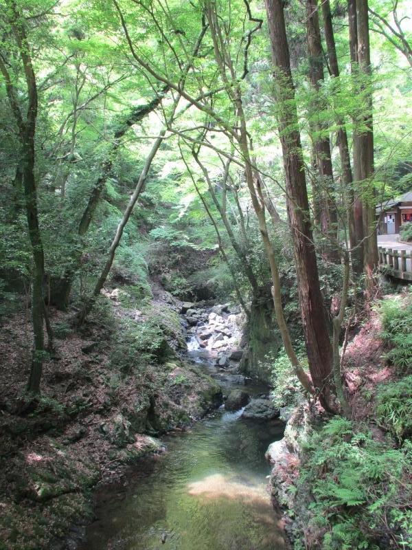 箕面滝道2