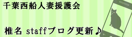 shinablog.jpg