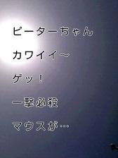 KC3Z00640001 (3)-1