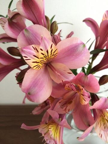 無印良品 無印 良品週間 ガラスフラワーベース 凸型ボトム Mサイズ アストロメリア 花瓶 花器