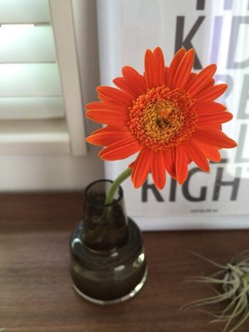 クリザール ガーベラ ホルムガード フローラ ベース フラワーベース 花器 花瓶