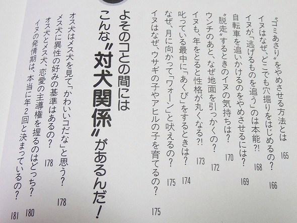 ib-10.jpg