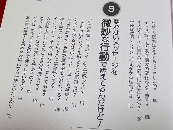 ib-7.jpg