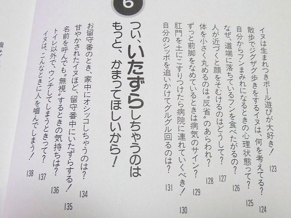ib-8.jpg
