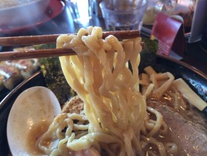 濃厚魚介麺