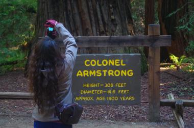 Armstrong Redwood SNR /Sonoma, CA-7, 2014-1,6