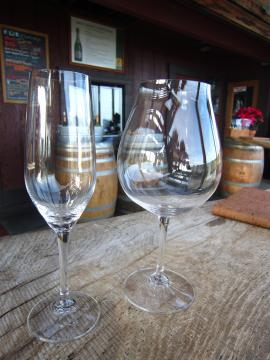 Iron Horse Vineyards / Sabastopol, CA-9, 2014-1-7