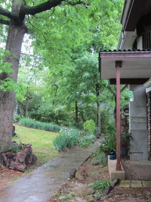 雨上がりの庭から-4, 2-15-5-7