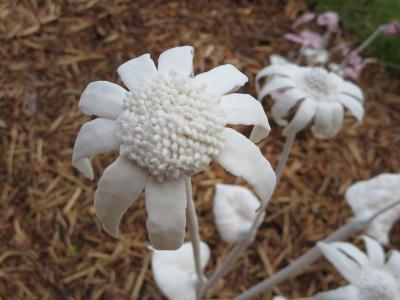 陶器で作られた花たち-2, 2015-6-20