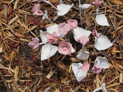 陶器で作られた花たち-3, 2015-6-20