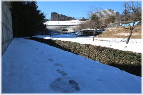150131E 009凍結歩道@上谷戸32