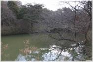 150221E 011柳沢の池32