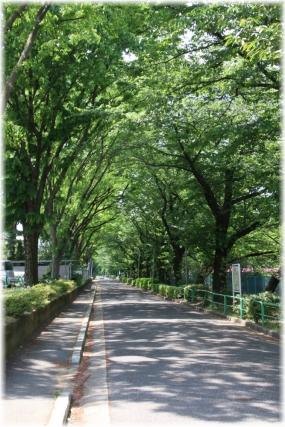 150505E 051神石神井4-32