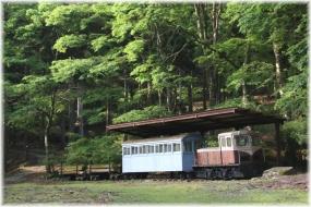 150523E 104森林鉄道@遊々の森32