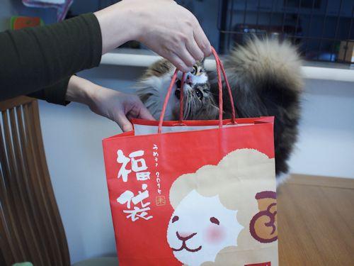hukubukuro2.jpg