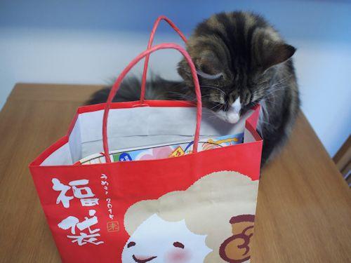 hukubukuro3.jpg