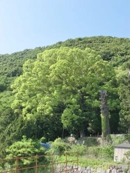 湯船山 (3)