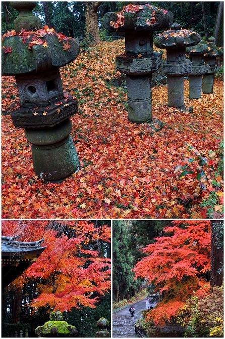 141130感仙殿の紅葉