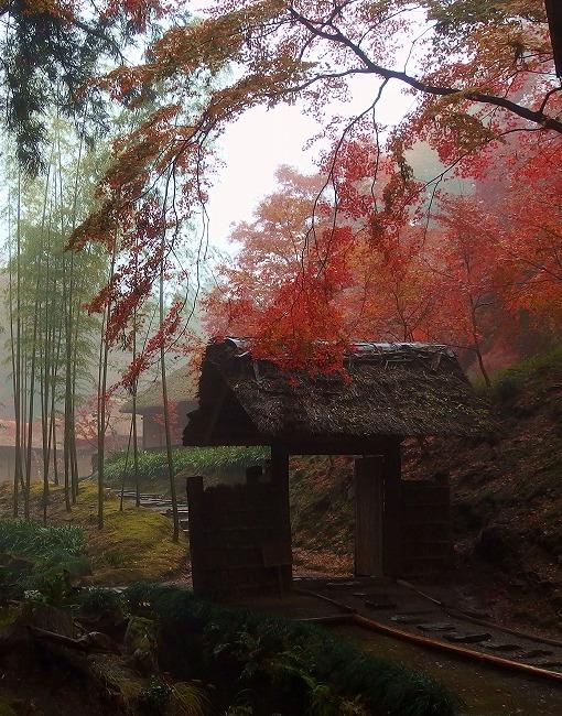 141201西山荘-3