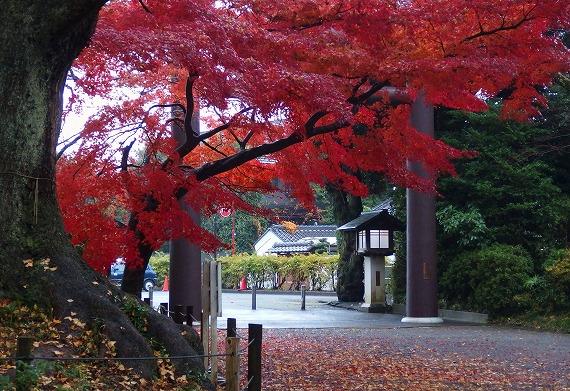 141201常盤神社-3