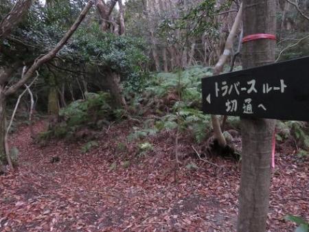 金中山バルーン 257