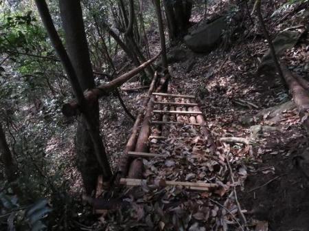 金中山バルーン 274