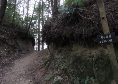 金中山バルーン 305