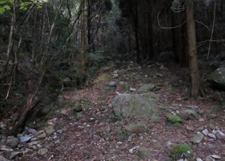金中山バルーン 319