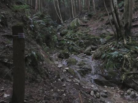 又金立山へ吉野ヶ里 143