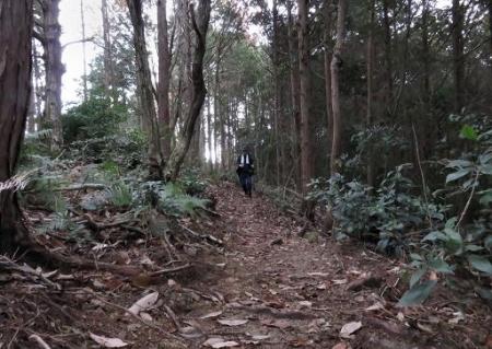 又金立山へ吉野ヶ里 117