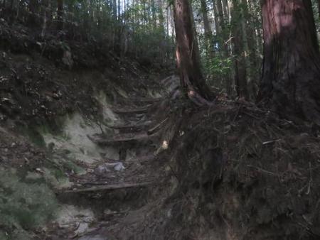 又金立山へ吉野ヶ里 168