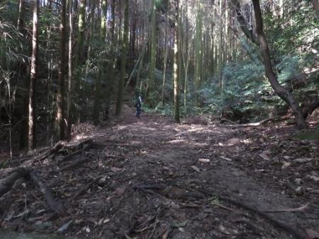 又金立山へ吉野ヶ里 164