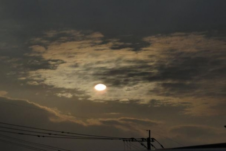 カラスと夕焼け雲 064