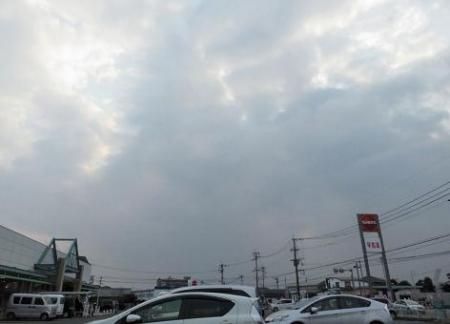 カラスと夕焼け雲 070