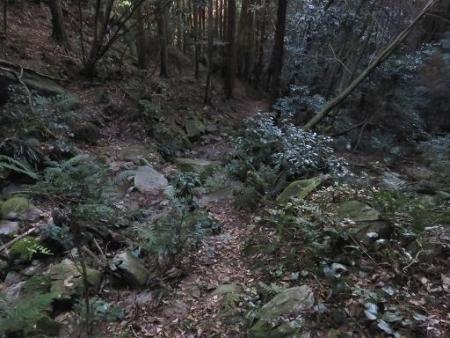 又金立山へ吉野ヶ里 218