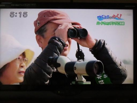STSサガテレビ鳥 024