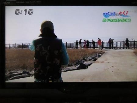 STSサガテレビ鳥 022
