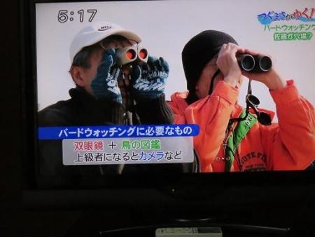 STSサガテレビ鳥 039