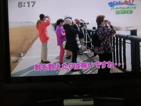 STSサガテレビ鳥 037