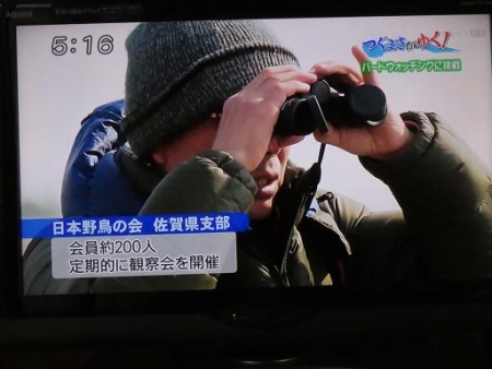 STSサガテレビ鳥 031