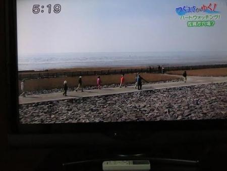 STSサガテレビ鳥 062