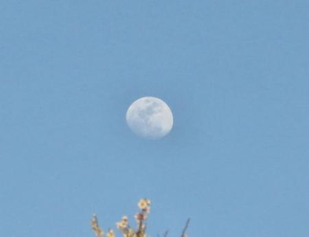 月と夕陽 038