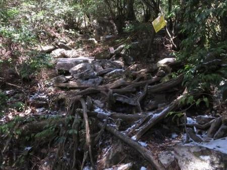 多良岳登山 153