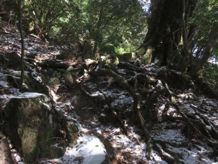 多良岳登山 151