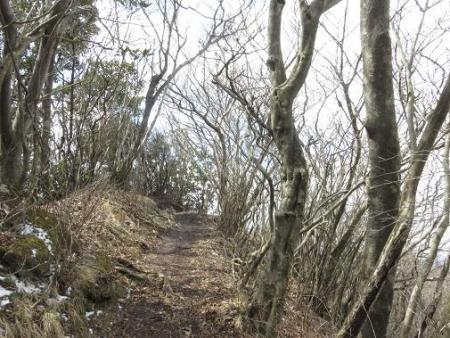 多良岳登山 185