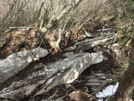 多良岳登山 247
