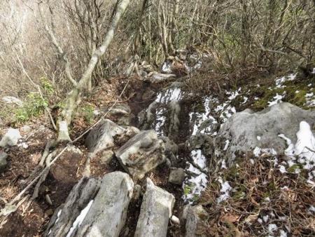 多良岳登山 241