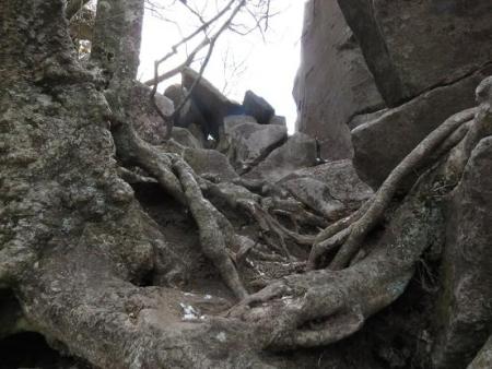 多良岳登山 259