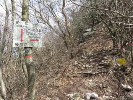 多良岳登山 256